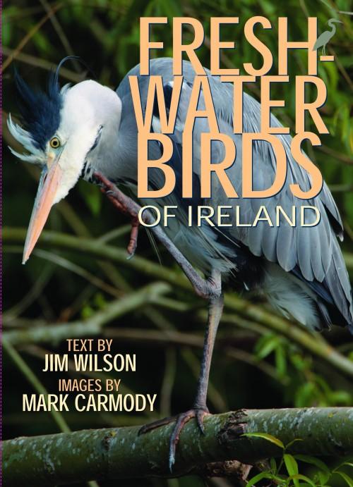 freshwater_birds_of_ireland
