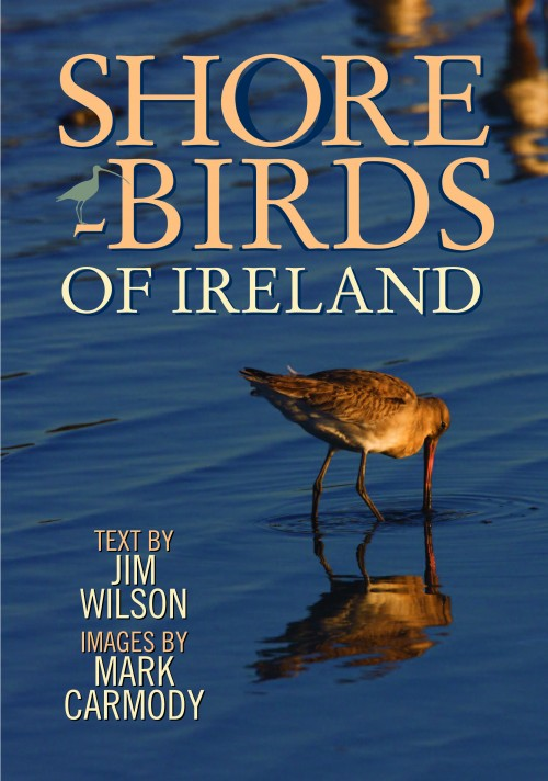 shorebirds_of_ireland_cover